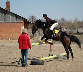 Владимир — спортивные секции, школы и клубы Спорт